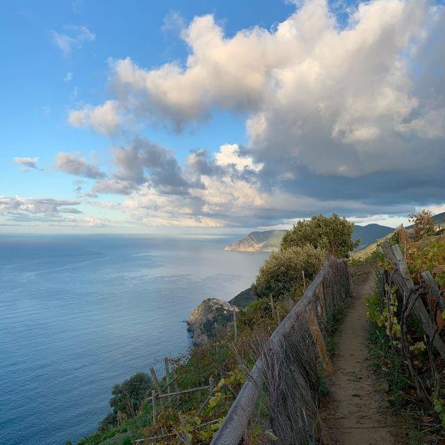 Heading toward Corniglia on the final 10km.   #sciacchetrail  #trailrunning  #cinqueterre  #winetrail  #vineyard