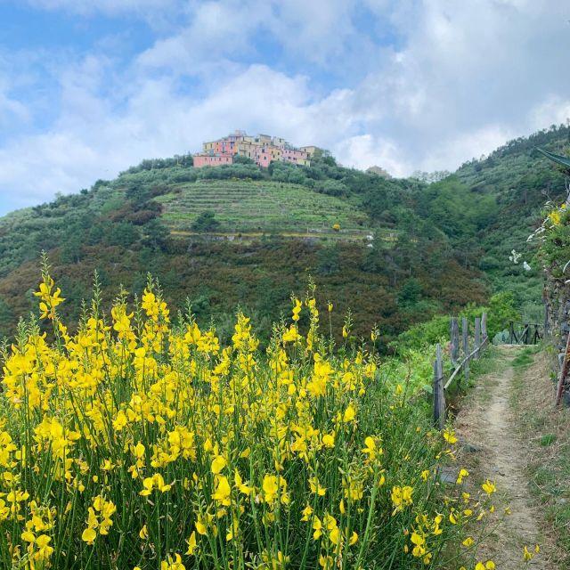 Volastra from Trail N. 506V  #volastra #cinqueterre  #nationalpark  #liguria  #italy #trails  #hiking  #trailrunning  #ilikeitaly  #wanderlust  #wheretonext