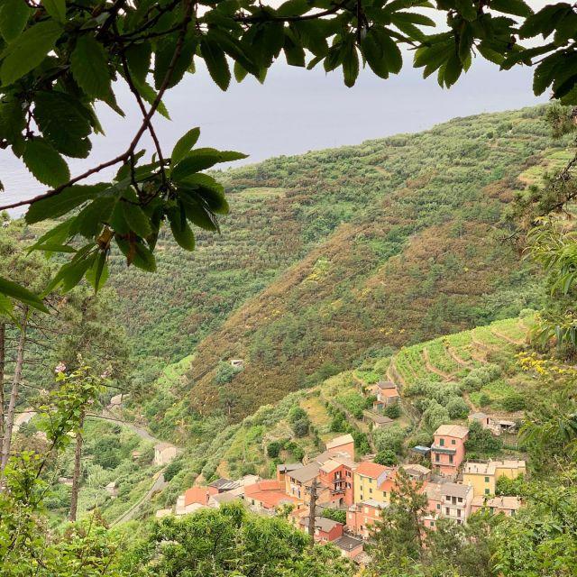 🇺🇸🥾The hamlet of Groppo from the Val di Chiara Trail.  🇮🇹🥾La frazione di Groppo, vista dal sentiero di Val di Chiara.  #montelecrocitrailpark #cinqueterre #liguria #italy #hiking #trailrunning #greatoutdoors  #adventure  #wheretonext