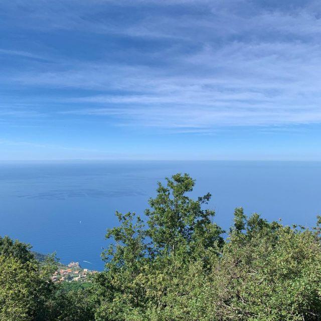 🇺🇸⛰🥾It's a little bit cooler up at 726 meters above sea level.  🇮🇹⛰🥾 Fa un po' più fresco a 726 metri sul livello del mare.    #montelecroci  #heatwave #summer  #montelecrocitrailpark  #cinqueterre  #liguria #italy #greatoutdoors  #adventure  #trailrunning  #hiking #mtb
