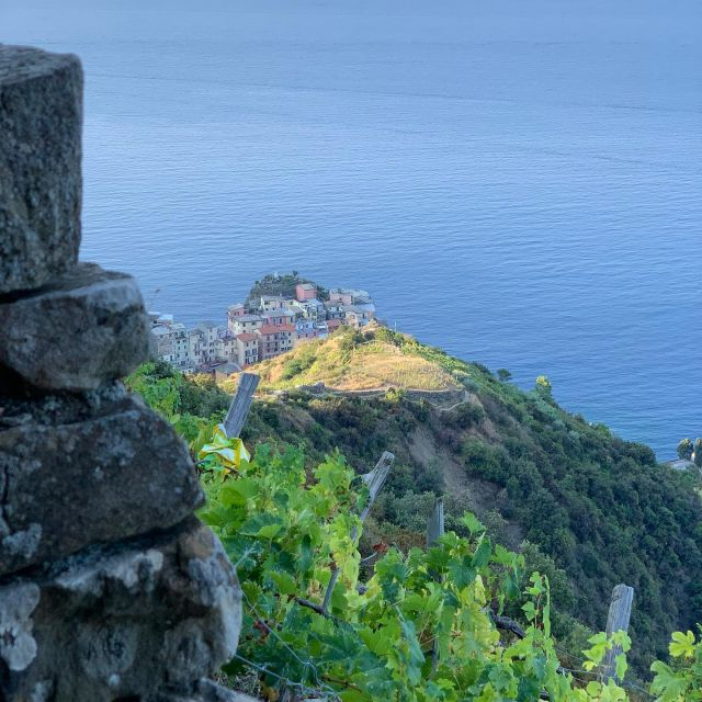 The Donega Trail is a historic route that once was the main connection between Manarola to Volastra.  Repair work on it is scheduled for the near future, and we hope that it eventually becomes part of the REL trail network.   #manarola  #cinqueterre  #nationalpark #liguria #italy  #historictrail #trails #sciacchetrail