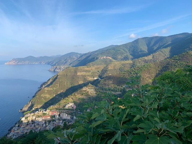 View of the Cinque Terre coastline from the Sanctuary of Montenero above Riomaggiore.  You can reach Montenero from Riomaggiore on Trail SVA/593, or on the slightly shorter, slightly steeper Trail 593V.  #montenero #riomaggiore #cinqueterre #trails #sciacchetrail #liguria #italy #hiking #trailrunning #sanctuary #outdoor #adventure
