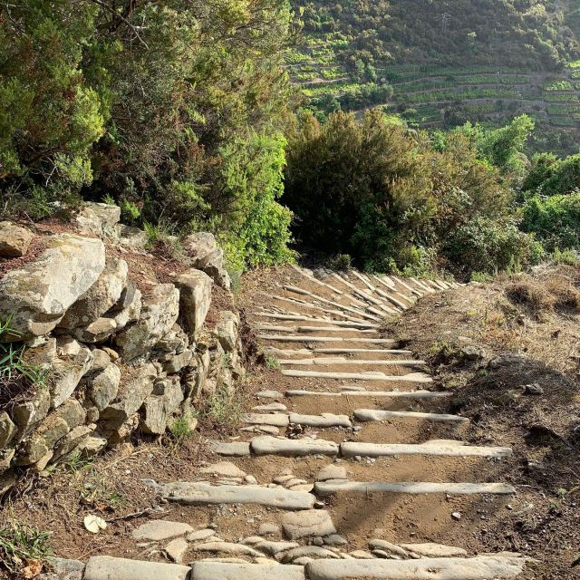 Trail N. 506 between Manarola and Volastra.  #cinqueterre  #nationalpark  #trails #liguria  #italy #stairs #mulattiera  #drystonewall  #hiking  #trailrunning