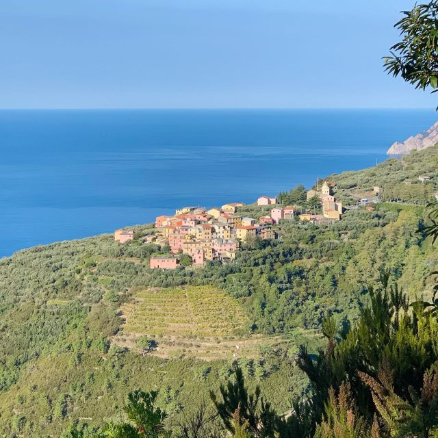 Volastra from Trail N. 502  #cinqueterre #nationalpark #liguria #italy #trails #outdoor #adventure #hiking #trailrunning