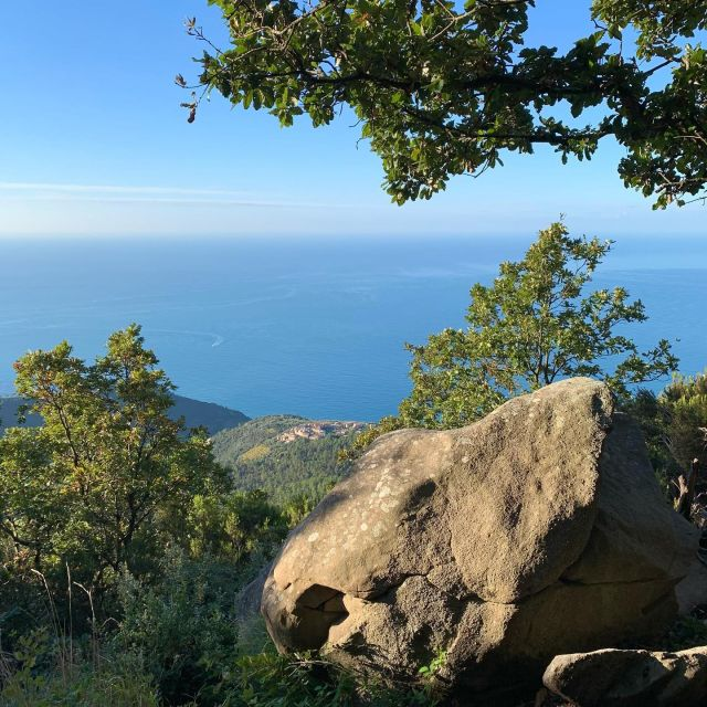 It's still sunny and warm here, which makes for perfect hiking and trail running conditions.  #cinqueterre #nationalpark #liguria #italy #trails #hiking #trailrunning #outdoorparadise #adventure #autumn